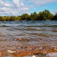 Ветерок на озере :: Alexander Andronik