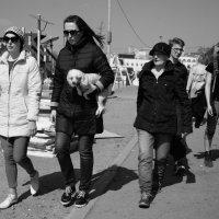 Собаку вывели погулять :: Sofia Rakitskaia