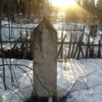Последние лучи... :: Марина Китаева