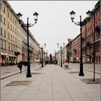 Малая Конюшенная улица :: Galina Belugina