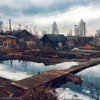 Моя деревня :: Сергей Селевич