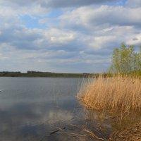 Пруд весна. :: Виктор ЖИГУЛИН.