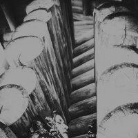 День ветра :: ufoto16©photography ufoto16©photography