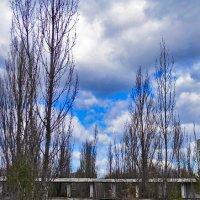 Чернобыль весной :: Valentina Ariel
