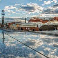 И шторма он победит! :: Ирина Данилова