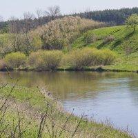 Река Волчья :: Alex G.