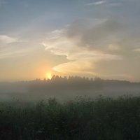 Туман сгущался :: Лара Симонова