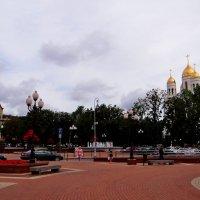 Калининград. :: Антонина Гугаева