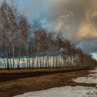 Весна :: Roman Dergunov