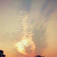 Рисунок в небе :: Анюта Золотых