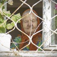 бабушка-старушка :: Михаил Полыгалов