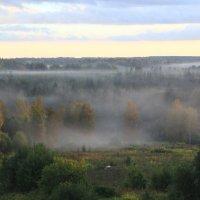 туман :: Ольга Попова