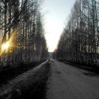 Луч света. :: Марина Китаева