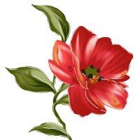 Аленький цветочек :: Александр Тарасенко