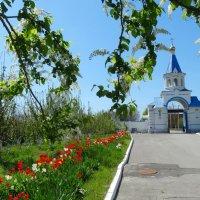 Врата и монастырское подворье Свято-Иверского монастыря... :: Тамара (st.tamara)