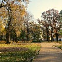 Осенний сквер. :: Валентина Жукова
