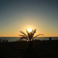 Вечер на пляже :: valeriy khlopunov