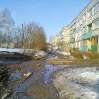 Весенняя улица. :: Марина Китаева