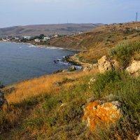 На море Азовском..(п. Курортное,Крым) :: владимир