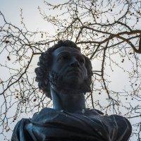 памятник Пушкину :: sergio tachini