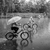 Прошлогодний дождь :: Александр Орлов