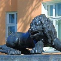 Чугунные лев у здания Министерства культуры Республики Карелия :: Avada Kedavra!