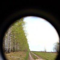 весенний пейзаж... :: Дмитрий Денисов