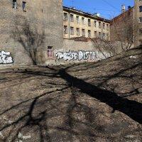 Апрель, тень большого дерева над бомбоубежищем :: Татьяна [Sumtime]