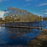 Утонувший мостик... :: Sergey Gordoff