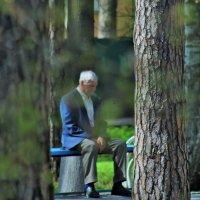 В парке городском.. :: Galina ✋ ✋✋
