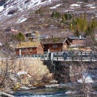 весна в Kongsvold :: liudmila drake