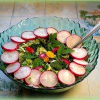 Весенний салатик с крапивой и снытью :: Андрей Заломленков