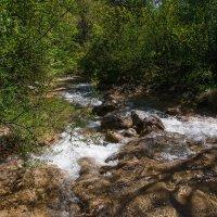 Бурная горная река :: Nyusha