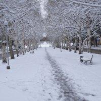 последний снег... :: Alexandr Staroverov