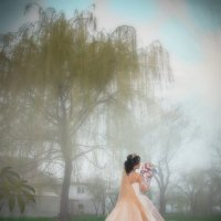 Свадебное фото :: Геннадий Никулочкин
