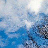 Небо :: Анна Бойко