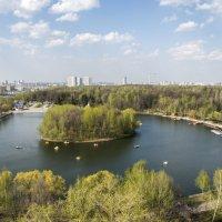 Измайловский Парк  Москва :: Олег Савин