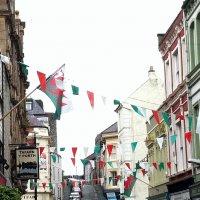 В цветах национального флага :: Марина Домосилецкая