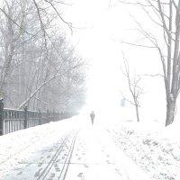 зимняя метель :: Ksenia Sun