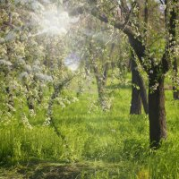 Начало мая :: оксана косатенко