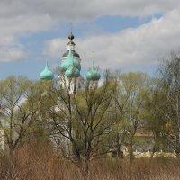 Монастырские купола, нежная зелень мая :: Николай Белавин
