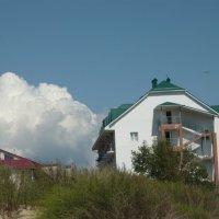 На берегу моря :: Вера Щукина