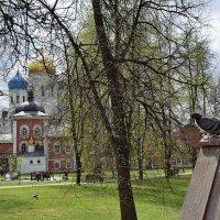 Весна в Николо - Угрешском монастыре. :: Татьяна Помогалова