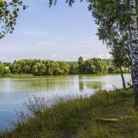 На лесном пруду. :: Igor Yakovlev