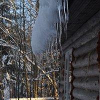 Зима :: Александра Невзорова