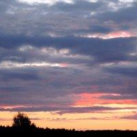 закат :: Софья Рыбина