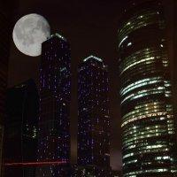 лунная ночь :: Омар Омаров