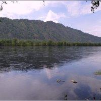Июльский пейзаж :: galina tihonova