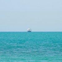 море :: Елена Течиева