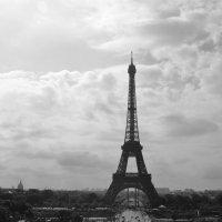 Paris :: Yana Kashutina